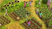Quản lý nông trại