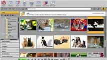 MAGIX Photo Manager 12 Deluxe: Chỉnh sửa kiêm quản lý ảnh số