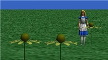 Alice ở xứ lập trình