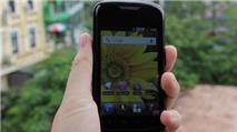 MobiFone làm 'tăng nhiệt' thị trường smartphone giá rẻ?
