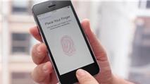 Touch ID đã bị bẻ gãy
