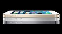 Apple tăng số lượng iPhone 5S màu vàng champagne