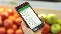 Green Bag: Ứng dụng đi chợ và siêu thị online đầu tiên tại Việt Nam