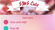 SMS 2016: Gửi tin chúc Xuân độc đáo