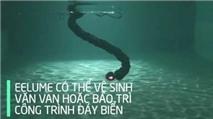 EELUME - robot rắn tự động sửa chữa, bảo trì các công trình dưới đáy đại dương