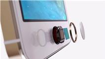 Cần làm gì khi nút Home trên iPhone bị đơ?