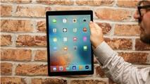 Loạt iPad Pro thành 'cục gạch' vì nâng cấp lên iOS 9.3.2