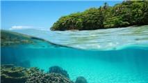 Siêu mẫu tử nạn vì chụp ảnh dưới nước