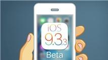 iOS gặp lỗi nghiêm trọng, người dùng cần lên ngay iOS 9.3.3