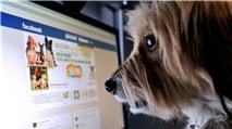 Muôn kiểu lừa đảo trên Facebook