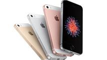 iPhone SE 'đẻ trứng vàng' cho Apple