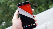 Google ra launcher mới cho Nexus 2016