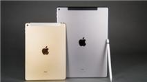 iPad Pro 12,9 inch hàng refurbished rẻ hơn đến 3 triệu đồng
