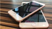 Apple iPhone 6 SE lộ điểm hiệu năng trên GeekBench, cao hơn nhiều iPhone 6s